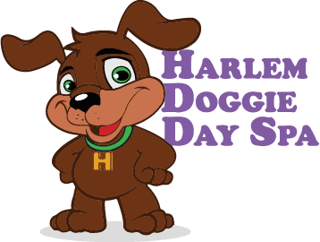 Harlem Doggie Day Spa